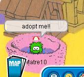 adopt-matre-puffle.jpg