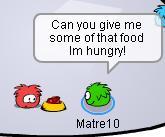 give-me-food.jpg